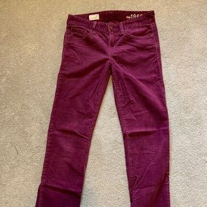 Gap purple corduroy pants